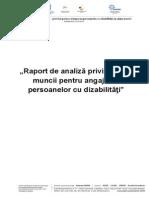 Raport de analiza privind piata muncii pentru angajarea persoanelor cu dizabilitati