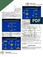 Manual Endocrinologia 1