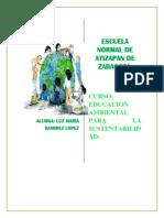 Reflexion Educacion Ambiental Para La Sustentabilidad