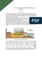 Plantas Acuaticas Tratamientos Aguas Residuales