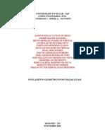 Relatorio Nivelamento Geometrico(Gilson)