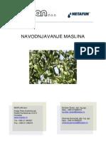 navodnjavanje_maslina.pdf
