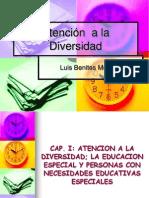 Libro-Atencion a La Diversidad