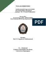 Bab 15 Organisasi Multinasional