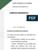 Cinética-Enzimática