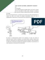 Vacas Lecheras 6