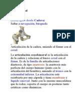 Articulación COXOFEMO