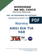 131243885-Norma-Ansi-Eia-Tia-568