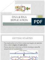 DNA & RNA Replication2