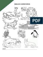 CLASIFICACIÓN DE ANIMALES POR SU ALIMENTACIÓN  Y REPRODUCCION.docx