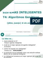 SSII-T4-AlgoritmosGeneticos