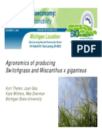 Agronomics of Producing Switchgrass and Miscanthus x Giganteus