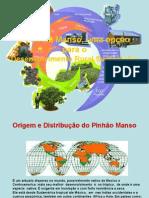 o phinhao manso uma alternativa para o desenvolvimento rural sustentable