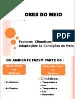 Factores Do Meio