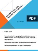 Anatomi Cavum Oris, Pharynx, Dan Oesofagus