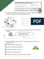 FA_Classificação dos seres vivos e água