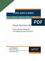 pasoAPasoVEP.pdf