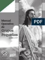 Manual Operativo de Grupos Pequeños