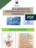 SEMINARIO-DIGESTÃO E ABSORÇÃO DAS PROTEÍNAS.pptx
