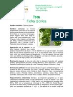 Ficha_Técnica_Teca