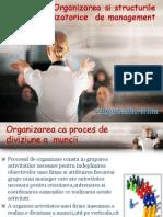 Organizarea Si Structurile Organizatorice de Management