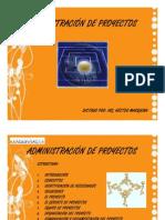 gerencia de proyectos.pdf