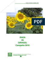 Raea de Girasol 2010