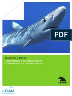 Informe Tiburones y Rayas Madrid cram