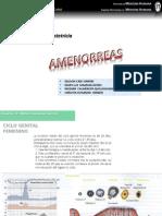 amenoreas.pptx