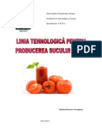 Proiect UIA