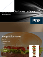 Burger Deforestation