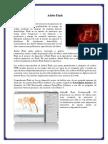 Adobe Flash.docx