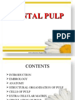 New Dental Pulp