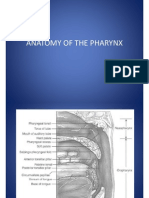 Atlas Anatomyof the Pharynx