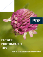 Flower+Photography+Tips+ +How+to+Take+Beautiful+Flower+Photos