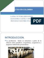 Industria Lactea en Colombia (Terminado) - Copia