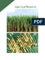 Sugarcane Leaf Remover