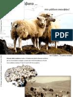 Από το πρόβατο στο σκουφάκι