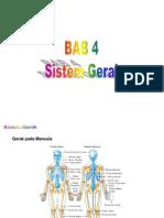 Kelas11 Biologi Sistem Gerak