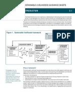 DFID livelihoods framework Sheets