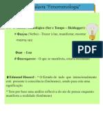 Fenomenologia e Existência TC(1)