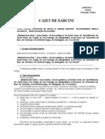 CAIET_SARCINI-CENTRU.doc