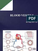 Blood Vessel Pathology