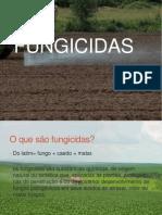 Fungi Cid As