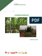 La Biomasa en Andalucia 0