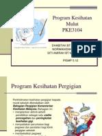 Program Kesihatan Mulut