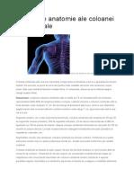 Notiuni de Anatomie Ale Coloanei Vertebrale