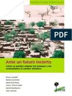 Ante Un Futuro Incierto Como Se Pueden Adaptar Los Bosques y Las Comunidades Al Cambio Climatico