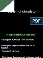 Curs 3 - Circulatia