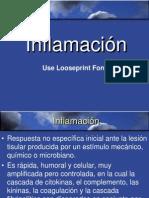 03. Inflamación